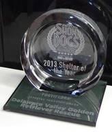 ED News_shelter-of-the-year-award
